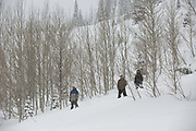 Jackson Hole in Wyoming, United States of America.