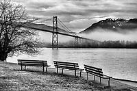 Lions Gate Bridge in the Fog, Stanley Park, Vancouver