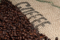 Coffee Beans Background and Burlap with Inscription.