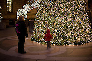 A boy approaches the Christmas tree in the courtyard of the New York Palace Hotel.