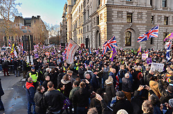 © Licensed to London News Pictures. 09/12/2018. London, UK. Demonstrators take part in a pro-Brexit march, organised by UKIP. The march took place three days before parliament's crucial vote on Theresa May's deal. Photo credit: Ray Tang/LNP