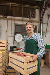 Portrait of a teenage worker holding fruits crate, Bavaria, Germany