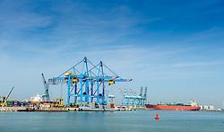 Container ships being loaded for sea in the port of Zeebrugge, Belgium.<br /> <br /> (c) Andrew Wilson | Edinburgh Elite media