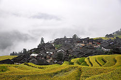 September 14, 2016 - China - Guizhou, CHINA-September 13 2016:?(EDITORIAL?USE?ONLY.?CHINA?OUT) ..Traditional village of Dong minority group in Congjiang County, southwest China¬°¬Øs Guizhou Province. Dong ethnic minority people are traditionally live on rice with skilled cultivating on famous terraces. It is also an ethnic group skilled in wooden architectures with no nails. The unique wooden architectures of inhabited houses and drum towers are the main features of Dong Minority. A typical Dong house is a three-floor building built on wood pillars; people live in the second floor, and the third floor is used as a storage for food while the first floor is reserved for animals and firewood. (Credit Image: © SIPA Asia via ZUMA Wire)