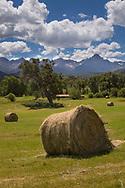 Hay harvest, Ridgway, Colorado