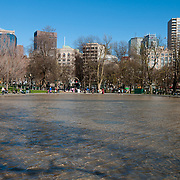 The Boston Common Frog Pond in springtime