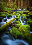 """Small creek near Sol Duc Falls.  The name Sol Duc means """"magic waters"""". The Sol Duc River is divided into 3 or 4 separate streams (depending on flow) by an irregular rocky ledge. The water drops about 25 feet over the ledge into a tight cleft, making a 90 degree angle turn. The river passes beneath a footbridge, then drops about 10 feet into a deep teal pool."""