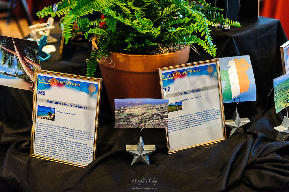 A couple of the items that were up for grabs during the silent auction at SOPAC's 2015 Gala.