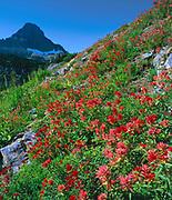 Paintbrush andReynolds Mountain,Glacier National Park, Montana