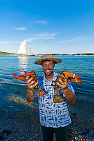 Captain Owen Dorr holding lobsters at a lobster bake on the beach on Russ Island, his ship the Schooner Nathaniel Bowditch is moored in the background, Penobscot Bay, Maine USA