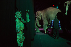 """Tatiana Tchalabaev, of The Thundering Cossack Warriors, blows a kiss to a colleague backstage before the start of a performance. Ringling Bros. and Barnum & Bailey Circus started in 1919 when the circus created by James Anthony Bailey and P. T. Barnum merged with the Ringling Brothers Circus. Currently, the circus maintains two circus train-based shows, the Blue Tour and the Red Tour, as well as the truck-based Gold Tour. Each train is a mile long with roughly 60 cars: 40 passenger cars and 20 freight. Each train presents a different """"edition"""" of the show, using a numbering scheme that dates back to circus origins in 1871 — the first year of P.T. Barnum's show."""