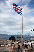 """Gentoo penguins at the former British """"Base A"""", now run by the Antarctic Heritage Trust, Port Lockroy, on Goudier Island, Antarctica."""