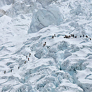 A rescue crew comprised of members from nearly every team at Basecamp searches the avalanche debris for victims.
