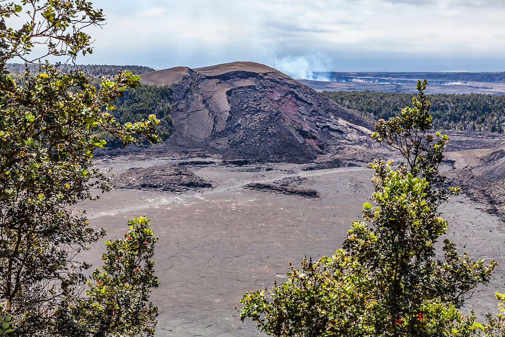 The crater floor of Kilauea Iki Crater  and Pu'u Pua'i with the steaming Kilauea crater in the distance, 2017 as seen from the crater rim, Hawai'i Volcanoes National Park, Hawaii, USA.