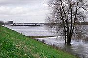 Nederland, Nijmegen, 20-2-2020  Binnenvaartschip, duwcombinatie, beladen met kolenvaren over de Waal richting Duitsland. De lading komt uit de haven van Rotterdam en is op weg naar het Ruhrgebied als brandstof voor hoogovens en elektriciteitscentrales ... FOTO: FLIP FRANSSEN