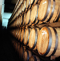 Barrels of tequila aging at the Herradura House in Jalisco, Mexico