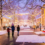 This picture has been taken from Nordre gata street in Trondheim which is one of my favourite place to take picture. It hhas a special decoration during christmas time and get an excellent atmosphere with snow and warm colors!