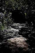 Alto Caparao_MG, Brasil...Estrada para a Cachoeira Bonita em Alto Caparao...The land road for Bonita waterfall in Alto Caparao...Foto: BRUNO MAGALHAES / NITRO