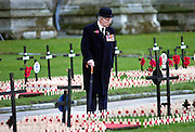 A war veteran touring the Field of Remembrance at St Margaret's Church in Westminster, London