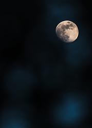 THEMENBILD - der Vollmond in der blauen Stunde durch Bäume fotografiert, aufgenommen am 27. April 2018 in Kaprun, Österreich // the full moon in the blue hour photographed through trees, Kaprun, Austria on 2018/04/27. EXPA Pictures © 2018, PhotoCredit: EXPA/ JFK