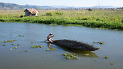 Man rowing in boat with wood delivery in Nan Pan on Inle Lake