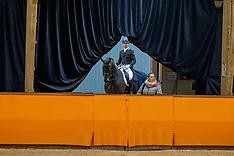 Hengsten WK jonge dressuurpaarden - KWPN keuring 2021
