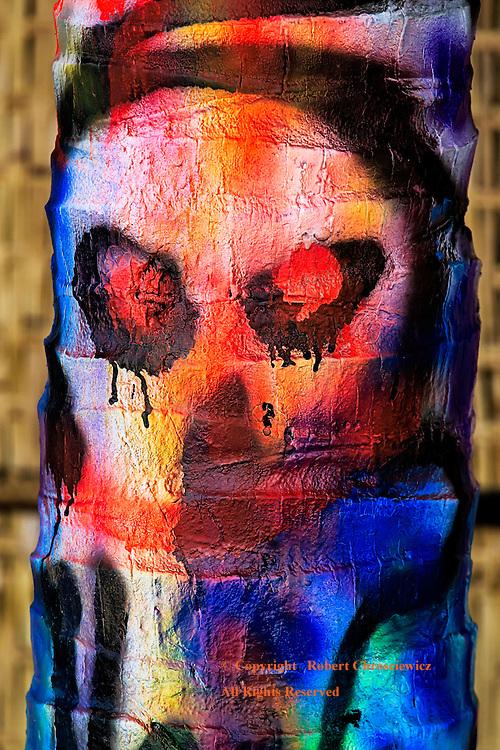 Skull - ville: A vividly spray painted skull adorns a palm trees trunk, on main street Shanoukville Cambodia.