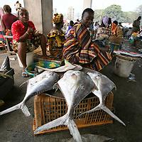 Fishery Conakry