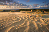 Sand dunes on Agilos Kopa, Nagliai Nature Reserve, Curonian Spit, Lithuania. Lithuania. Mission: Curonian Spit, Lithuania, June 2009.