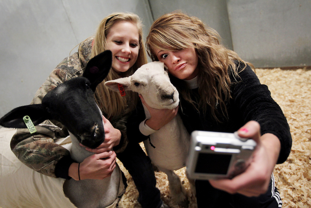 """Allen High School seniors and first-year FFA members April Butler, right, and Jensen DeGroot take a self-portrait with their sheep Pickles, right, and Moo, left, at the Collin County Junior Livestock Show at the Myers Park and Event Center in McKinney Wednesday January 6, 2009. On the first day of this school year, April's friend asked her, """"Do you want to be a shepherd?"""" Though she had no prior farm animal experience, Butler signed up because it sounded different and fun."""