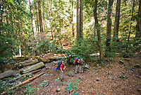 Backpackers take a rest on Pine Ridge Trail, Big Sur, California.