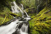 Washington State's Panther Creek Falls, Columbia River Gorge.