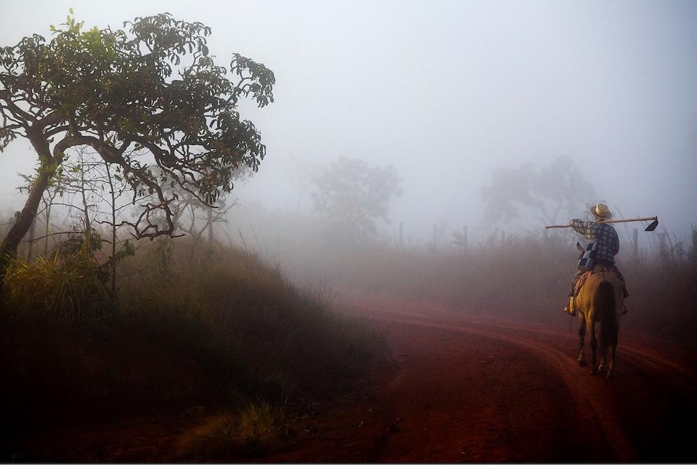 Dores do Indaia_MG, Brazil.<br /> <br /> Trabalhador rural em Dores do Indaia, Minas Gerais.<br /> <br /> Rural worker in Dores do Indaia, Minas Gerais<br /> <br /> Foto: LEO DRUMOND / NITRO
