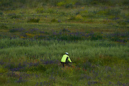 050220 Adults are allowed to do exercise and go out for a walk amid loosening coronavirus measures