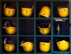 Helmets in Oakland, 2008