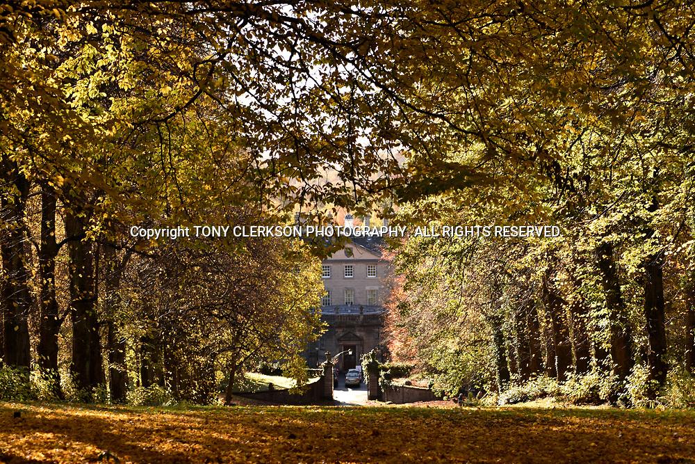 Pollok House and Garden surroundings - National Trust for Scotland