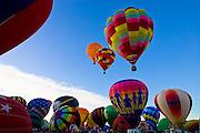 Balloons prepare for the mass ascension at the Albuquerque International Balloon Fiesta