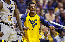 Jan 19, 2019; Morgantown, WV, USA; West Virginia Mountaineers guard Brandon Knapper (2) celebrates from the bench during the first half against the Kansas Jayhawks at WVU Coliseum. Mandatory Credit: Ben Queen-USA TODAY Sports