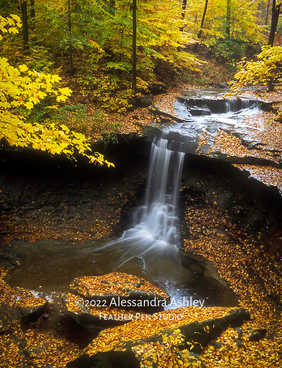 Cuyahoga Valley National Park's Blue Hen Falls at peak of autumn color. From original film image.