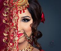 Indian, Indian wedding, indian portraits, portraits, bride, Toronto wedding,