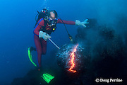 diver Bud Turpin probes erupting pillow lava at underwater eruption of Kilauea Volcano, Hawaii Island ( the Big Island ), Hawaii, U.S.A. ( Central Pacific Ocean ) MR 381