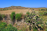Rural farming landscape view to hilltop Ta 'Gurdan, Gordan or Gordon lighthouse, Gozo, Malta