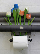 toilet paper with wooden tulips