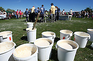 Coxheath, Kent - Saturday, May 22nd 2010: Vats of specially made custard stand ready at the World Custard Pie Championships at Coxheath near Maidstone, Kent. The first championship was held in 1967 in Coxheath using a special custard recipe developed by Richard Hearn aka Mr Pastry. The championship is made up of teams competing in heats, semi finals and the final, with the number of pies available per team increasing from 5 in the heats to 10 in the final. 6 points are scored for a direct hit on the face, 3 points for the shoulders or upwards, 1 point for any other part of the body, and points are deducted for misses. A discretionary 5 points can be awarded for the most amusing and original throwing technique. The event is part of the Rotary Club funday. (Pic by Andrew Tobin/SLIK Images)