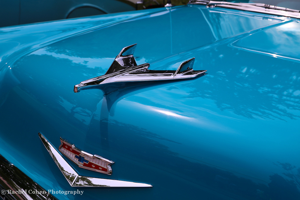 """""""1956 Chevrolet Hood Ornament""""<br /> <br /> Pure automobile beauty in blue with a super classic Chevrolet hood ornament!!<br /> <br /> Cars and their Details by Rachel Cohen"""