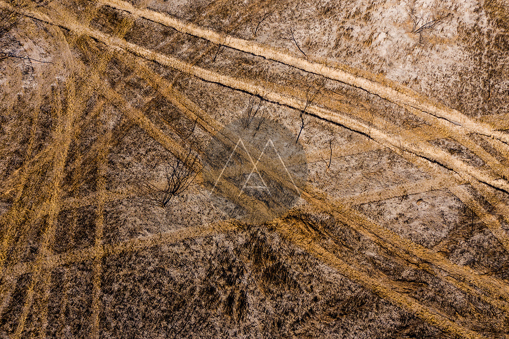 Aerial view of vehicle tracks in a field among the trees, Southwest Palm Bay, Florida, United States.