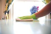 Caretaker Sanitizing Table