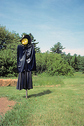 Scare Crow - Dressed As Witch