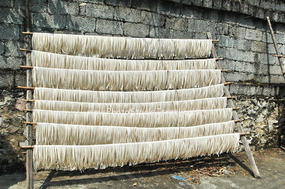 China, Noodles dry in the sun at a noodle factory