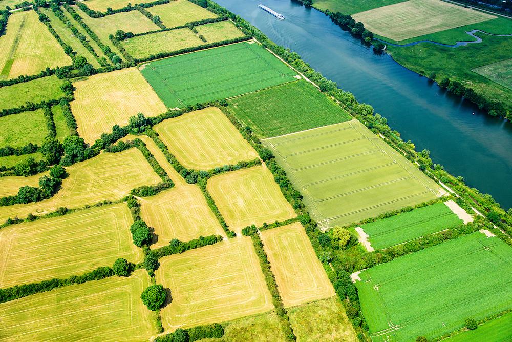 Nederland,Noord-Brabant,  Gemeente Boxmeer, 26-06-2014; Maasheggen in de Zoetepasweiden en Zurepasweiden, tussen Vierlingsbeek en Sambeek.<br /> Percelen gescheiden door gevlochten heggen van meidoorn en sleedoorn gelegen in de uiterwaarden van de Maas en in gebruik voor het weiden van vee. Historisch landschap met bijzondere ecologische waard.<br /> Maasheggen near Boxmeer. Plots for cattle are seprated by means of twinned or woven hedges of hawthorn and blackthorn. The hedges are located in the floodplain of the Meuse and used for grazing cattle. Historic landscapes with special ecological value<br /> luchtfoto (toeslag op standaard tarieven);<br /> aerial photo (additional fee required);<br /> copyright foto/photo Siebe Swart.